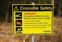 Crocodile_Safety