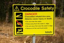 Crocodile_Safety