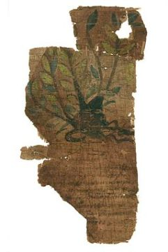 johnson_papyrus_fragment_of_an_illustrated_herbal-_wellcome_l0045048